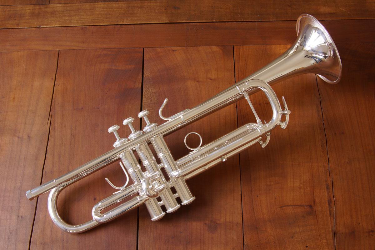 So sieht sie aus, die Bach VBS 1, wenn hinten noch ein S für Silber steht.