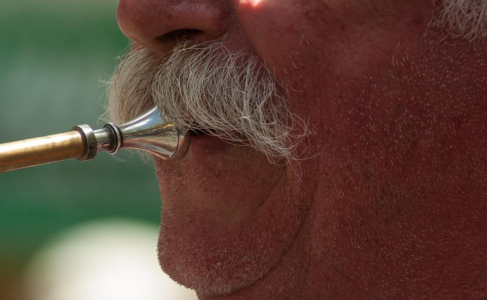 trumpetscout_spielen-mit-bart
